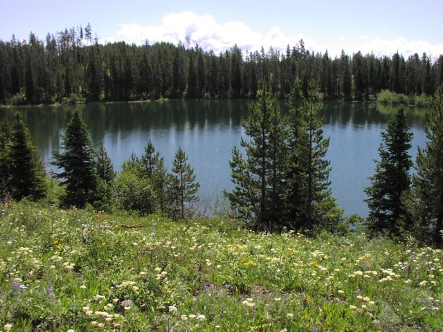Bearpaw-Lake