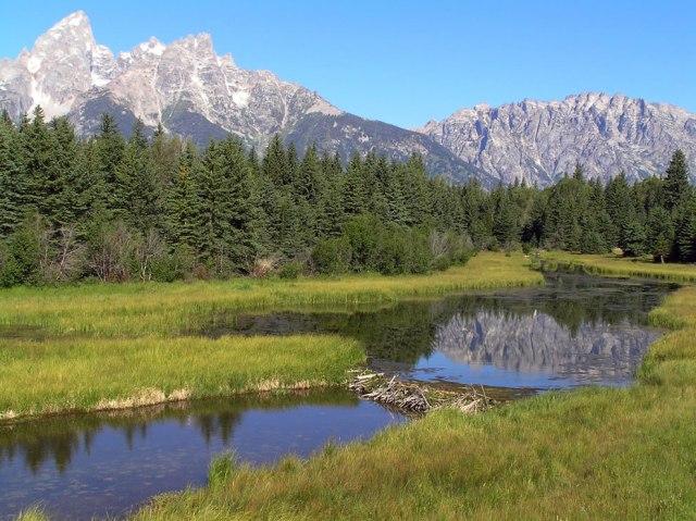 beaver-dam-at-Schwabachers-Landing-Teton-Range