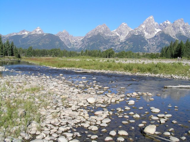 Snake-River-at-Schwabachers-Landing